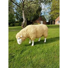 Grazing Sheep Statue