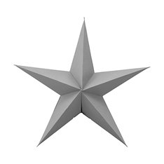 Star Decoration in Grey Medium