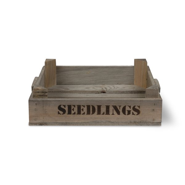 Seed Tray Seedlings Box