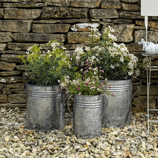 Set of 3 Galvanised Churn Planters