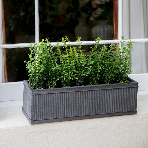 VIENNE STEEL WINDOW BOX